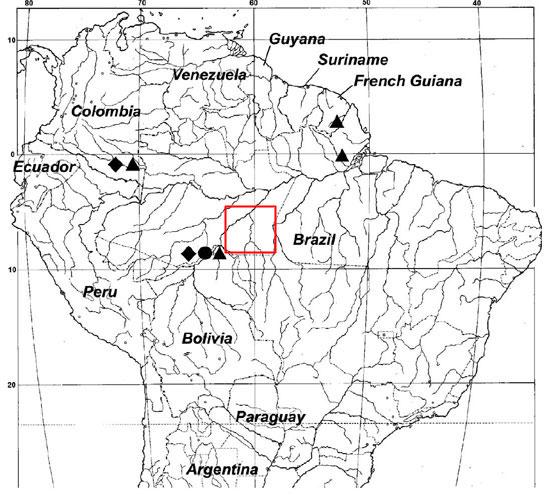 La nuova specie di tapiro vive negli stati brasiliani di Amazonas e Rondônia. Il cerchio sulla mappa indica il sito di raccolta dell'olotipo da parte di Cozzuol, mentre i triangoli le zone in cui il tapiro pigmeo è stato fotografato con l'utilizzo delle fototrappole. Il riquadro rosso indica l'areale della specie dedotto da Roosmalen sette anni prima