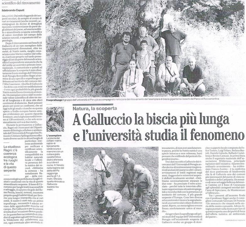 L'articolo di Ildebrando Caputi apparso su il Mattino