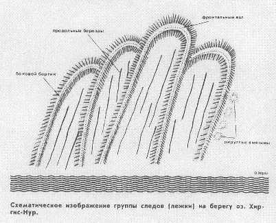 Schema delle tracce rinvenute sulla sabbia