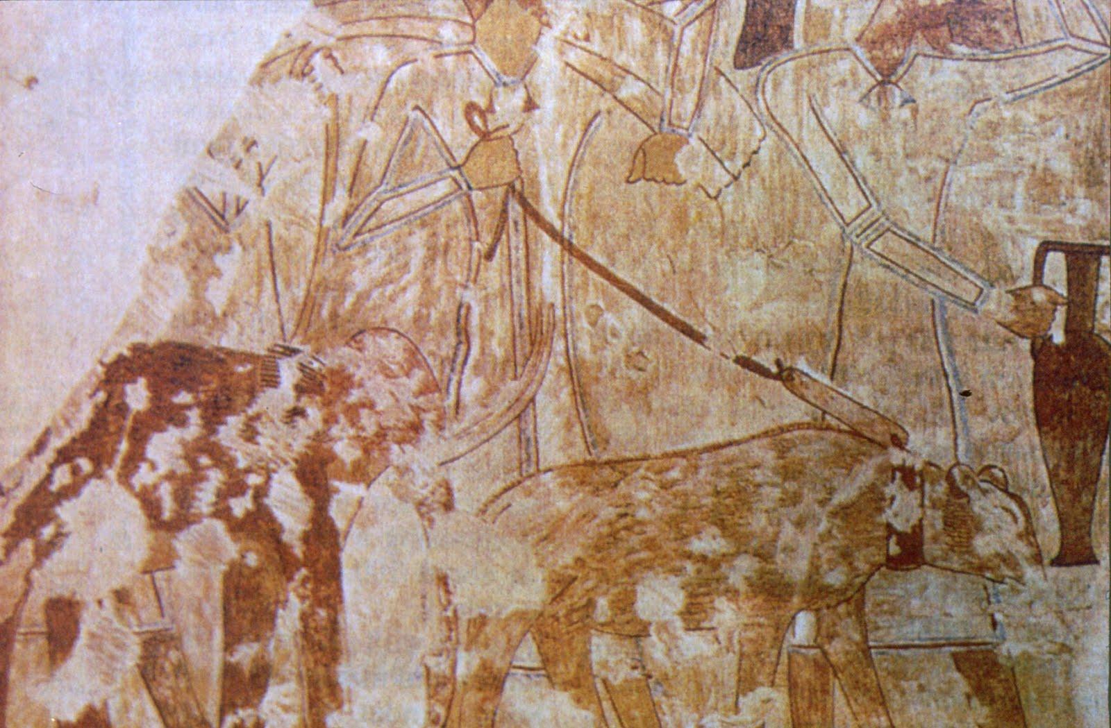 Fig. 5 - Particolare del dipinto della tomba di Rekhmire che mostra un elefante simile a un piccolo mammut.