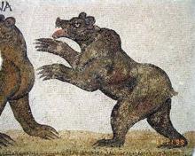 esistevano ancora orsi in Africa al tempo dei romani?