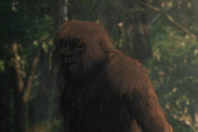 ricostruzione di fantasia tratta dal documentario Revealing the Yowie